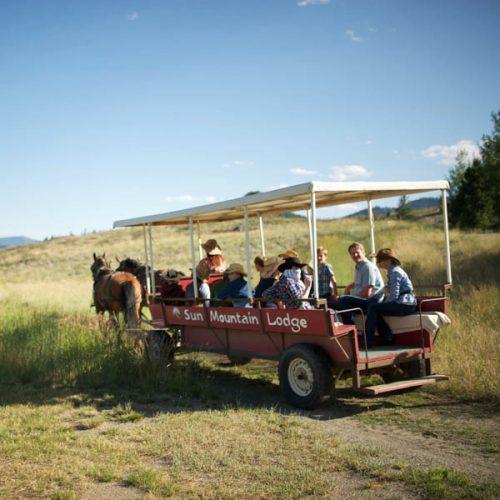 Horse Drawn Wagon Ride Grassy Knoll