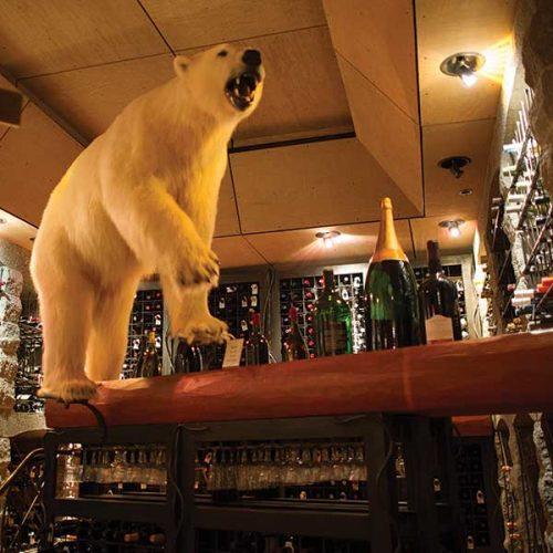 Wine Cellar Bear
