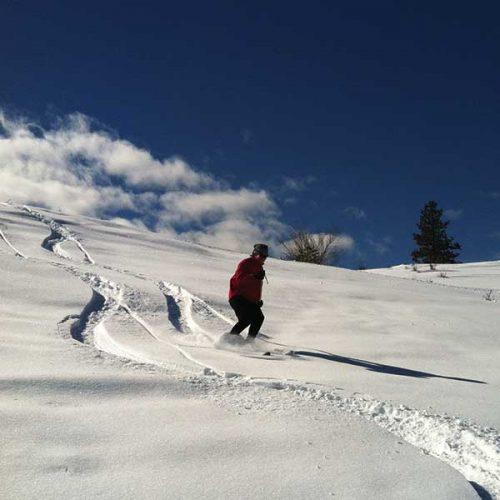 altai hok skiing