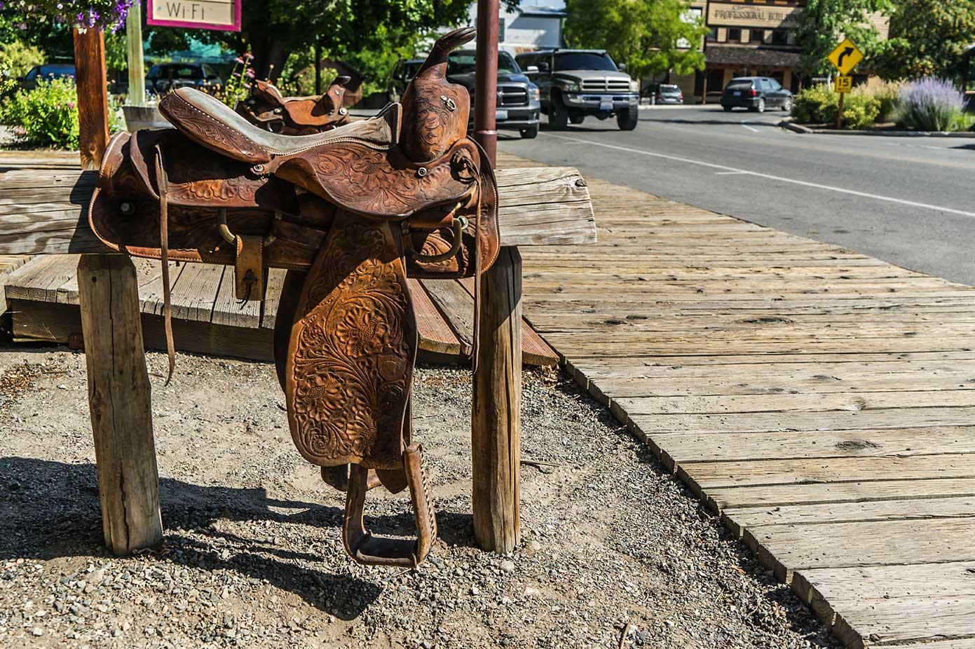 Winthrop saddle