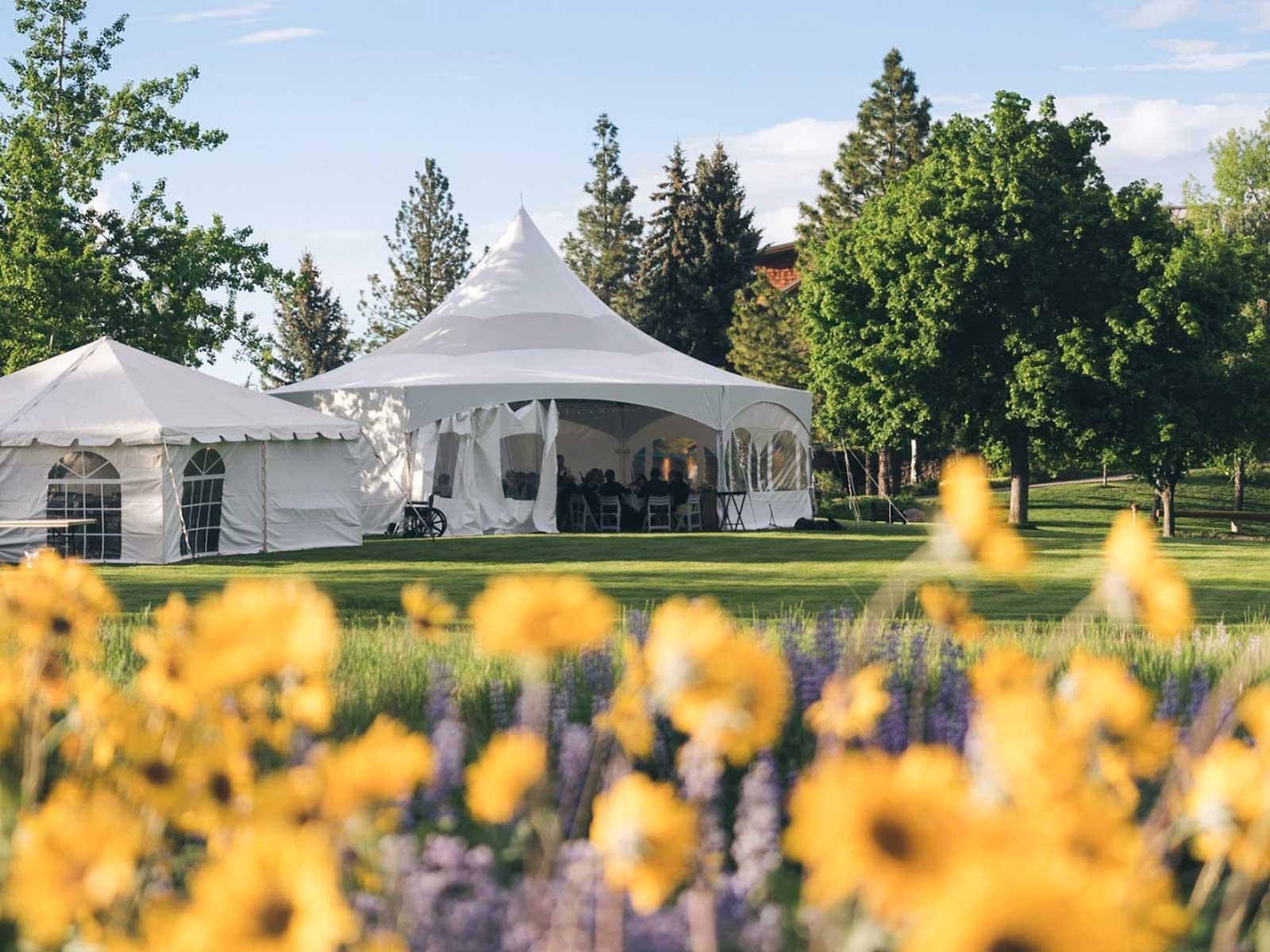 wedding tents wildflowers